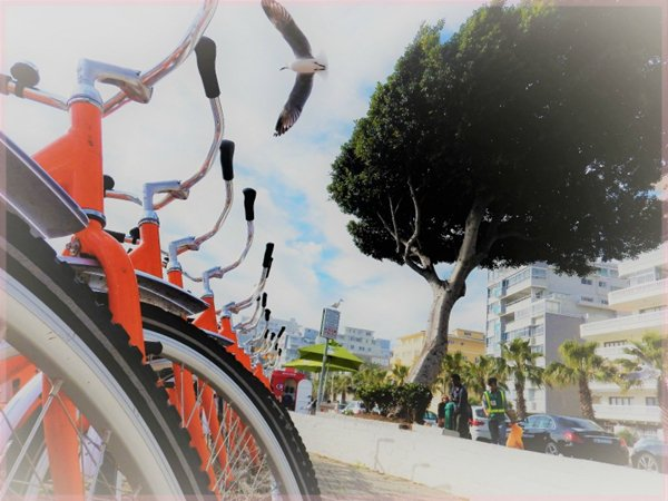 bikes for hire Sea Point