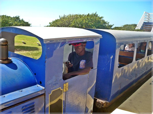 Blue Train on the Promenade Mouille Point Cape Town