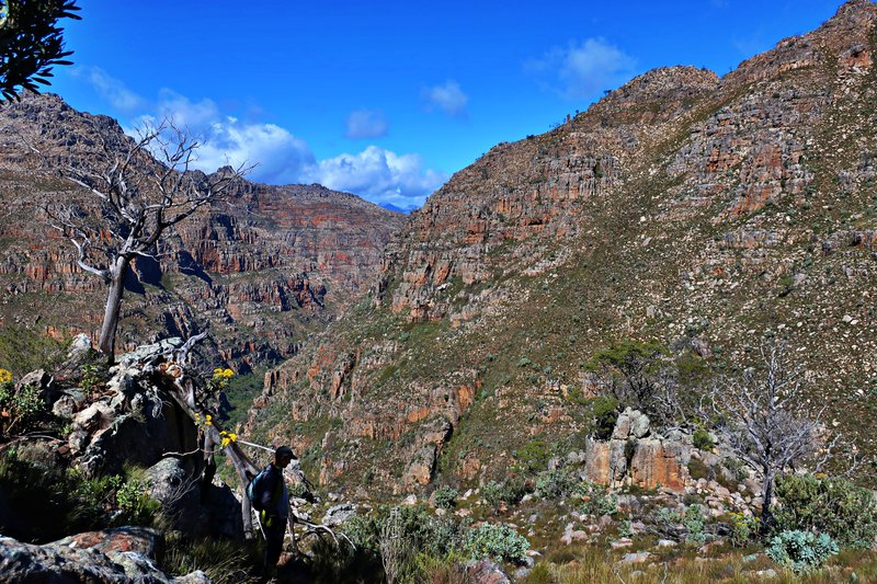 on trail in the Cederberg head to Sneukop