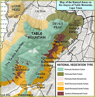 map of vegetation types Table Mountain sourced from Wikipedia